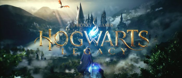 Video Game: Hogwarts Legacy